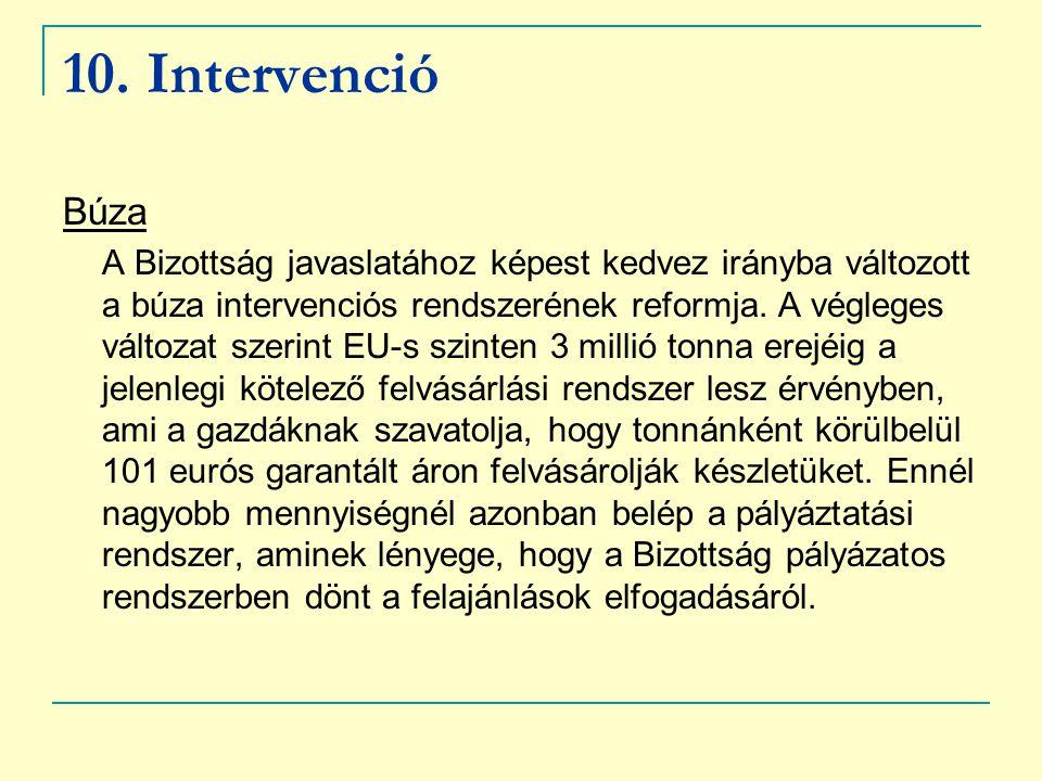 10. Intervenció Búza.