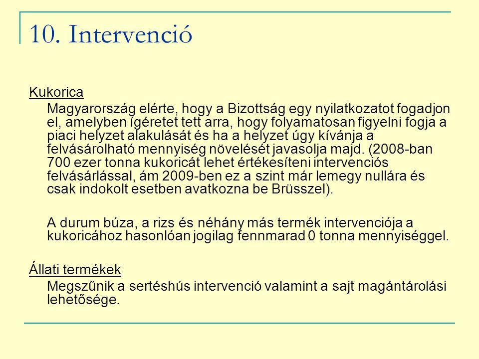 10. Intervenció Kukorica.