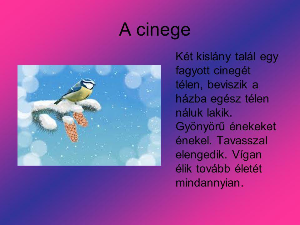 A cinege