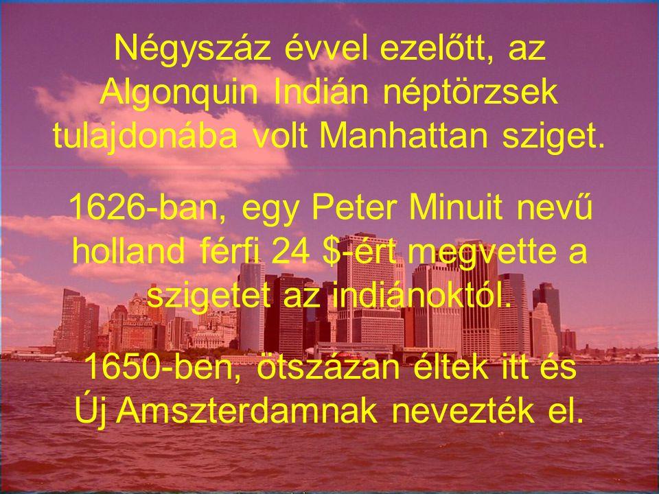 1650-ben, ötszázan éltek itt és Új Amszterdamnak nevezték el.