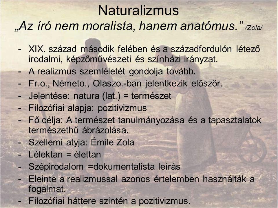 """""""Az író nem moralista, hanem anatómus. /Zola/"""
