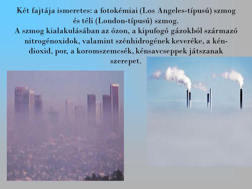 Két fajtája ismeretes: a fotokémiai (Los Angeles-típusú) szmog és téli (London-típusú) szmog.