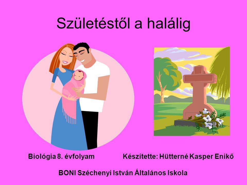 Születéstől a halálig BONI Széchenyi István Általános Iskola
