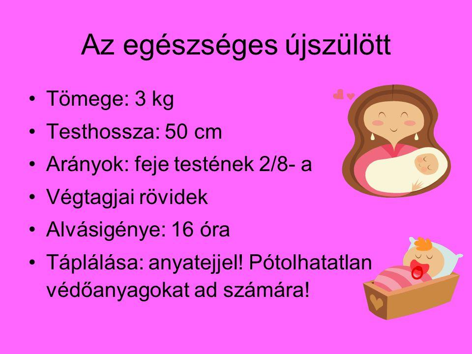Az egészséges újszülött