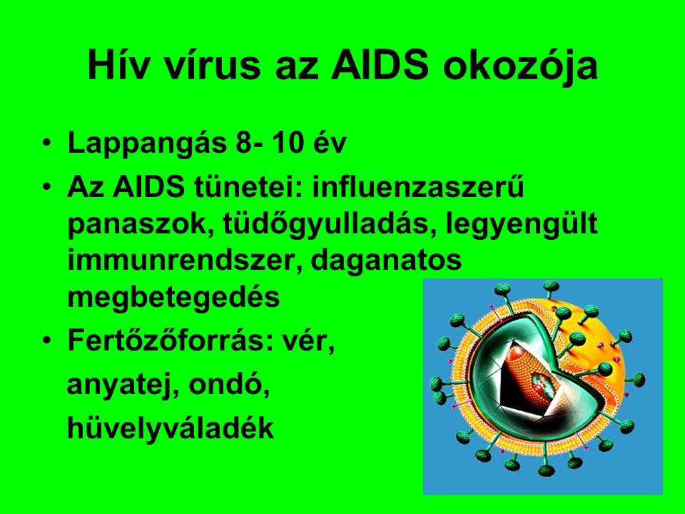 Hív vírus az AIDS okozója