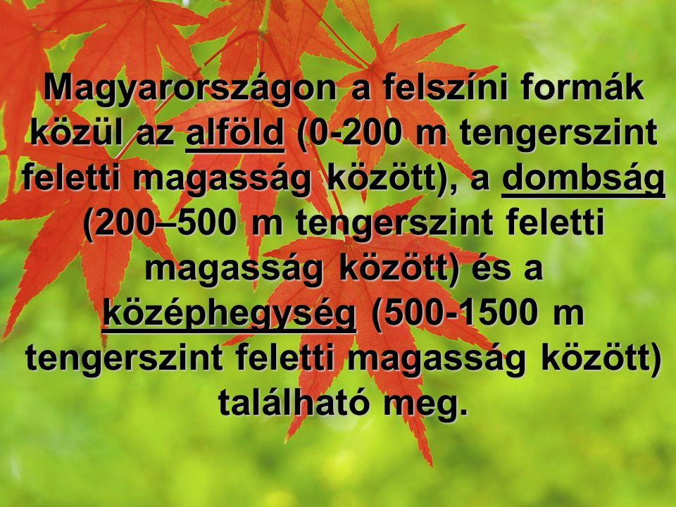 Magyarországon a felszíni formák közül az alföld (0-200 m tengerszint feletti magasság között), a dombság (200–500 m tengerszint feletti magasság között) és a középhegység (500-1500 m tengerszint feletti magasság között) található meg.