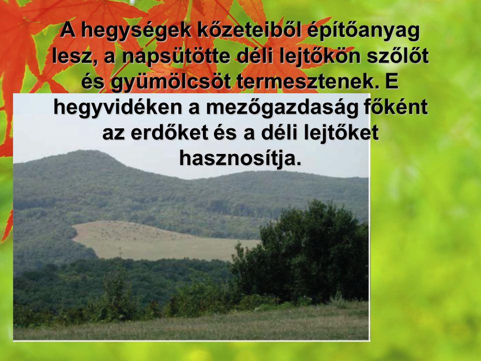 A hegységek kőzeteiből építőanyag lesz, a napsütötte déli lejtőkön szőlőt és gyümölcsöt termesztenek.