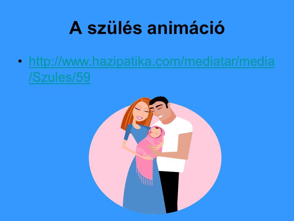 A szülés animáció http://www.hazipatika.com/mediatar/media/Szules/59