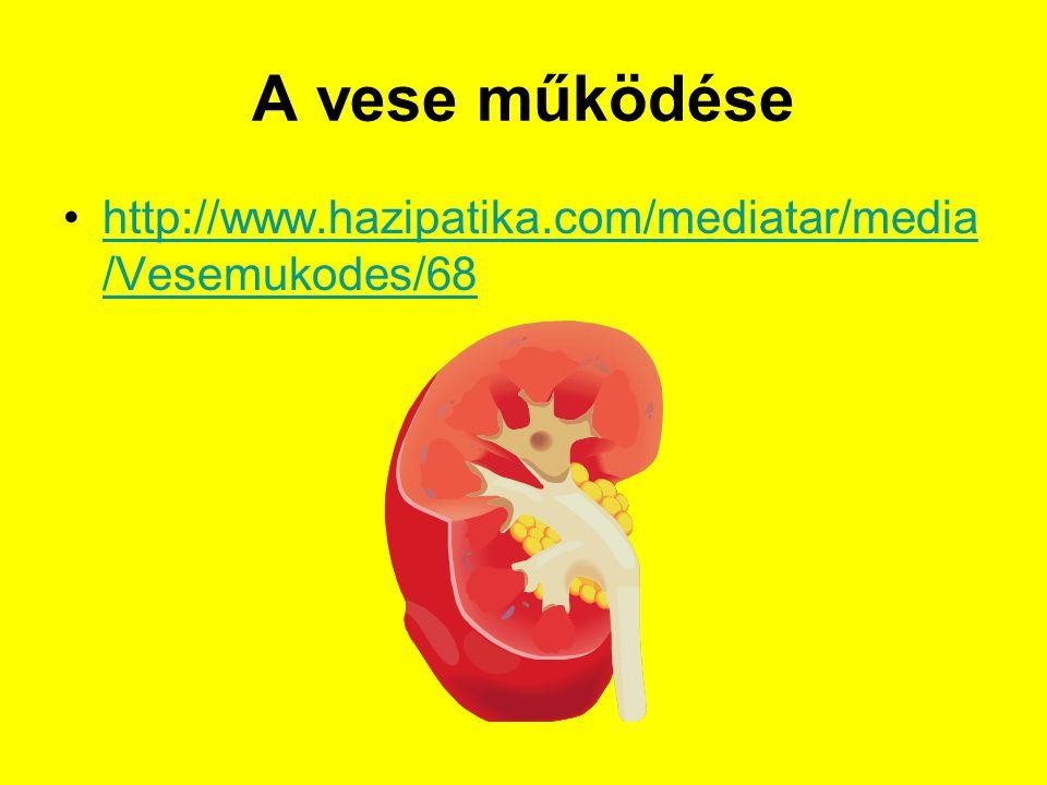 A vese működése http://www.hazipatika.com/mediatar/media/Vesemukodes/68