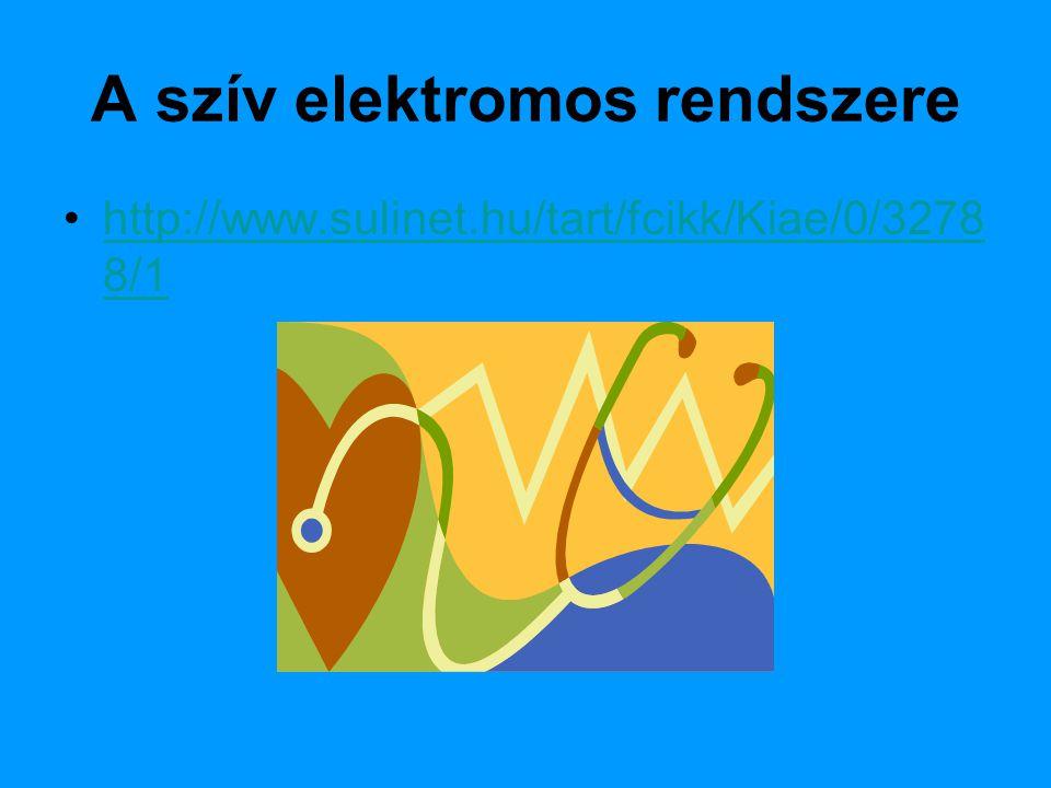 A szív elektromos rendszere