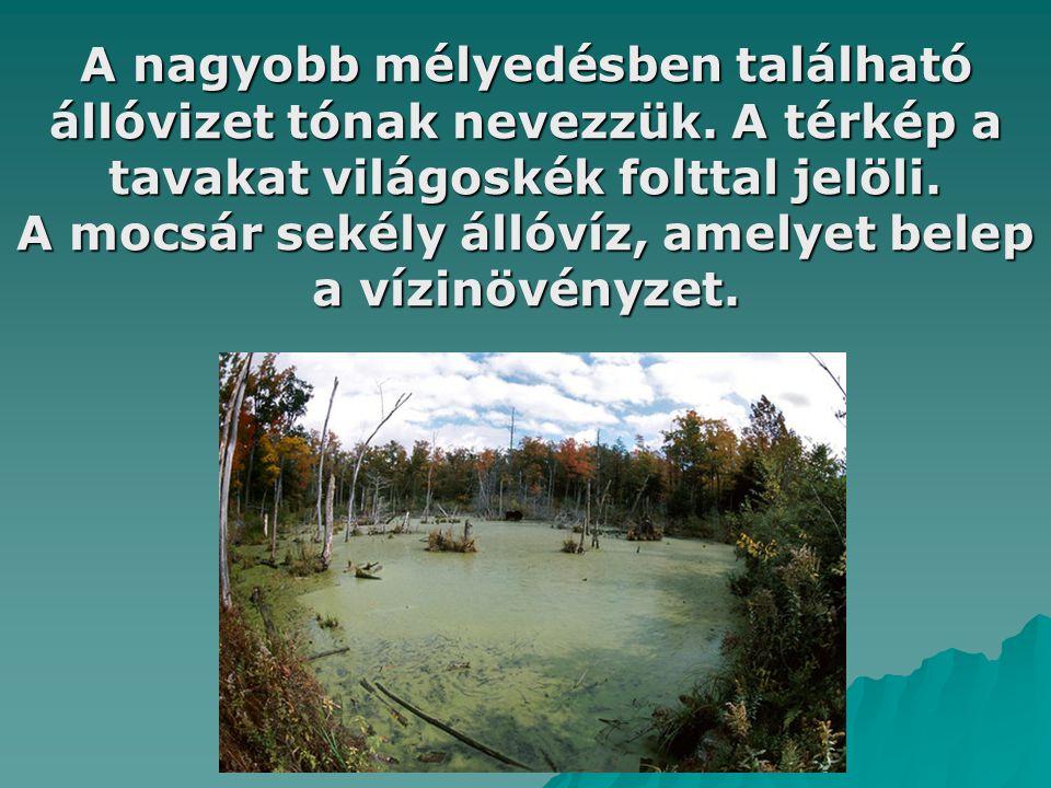 A mocsár sekély állóvíz, amelyet belep a vízinövényzet.