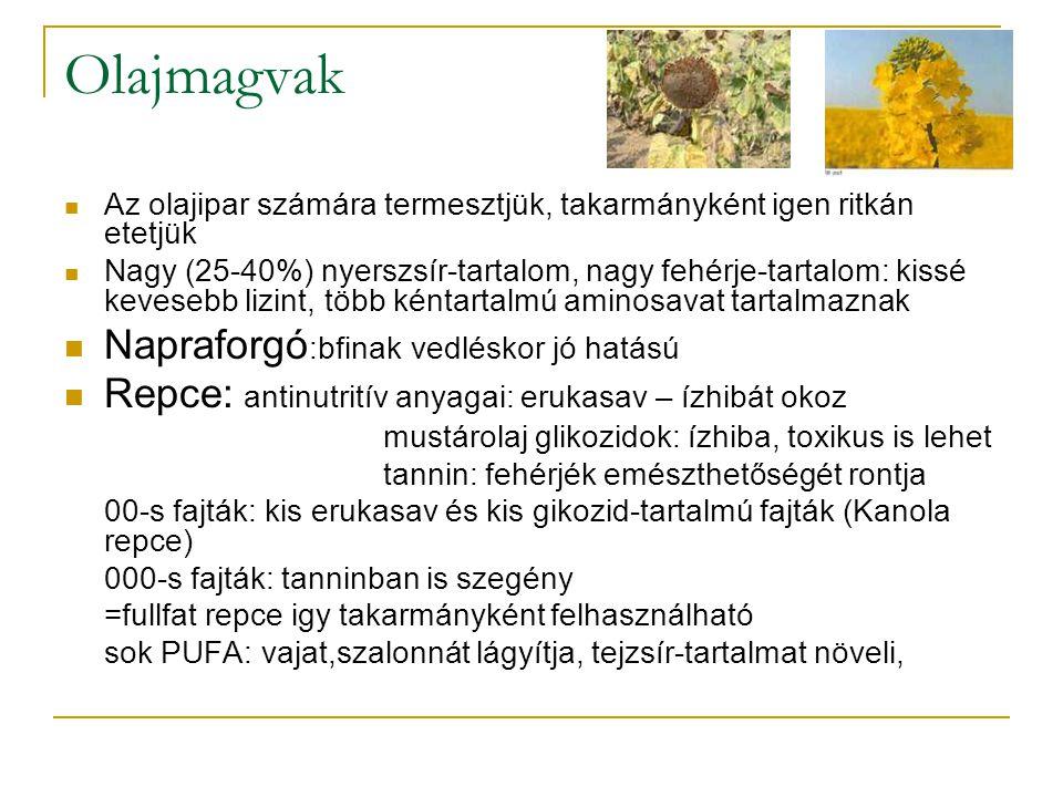 Olajmagvak Napraforgó:bfinak vedléskor jó hatású
