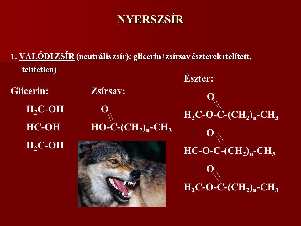 NYERSZSÍR Észter: O H2C-O-C-(CH2)n-CH3 HC-O-C-(CH2)n-CH3 Glicerin:
