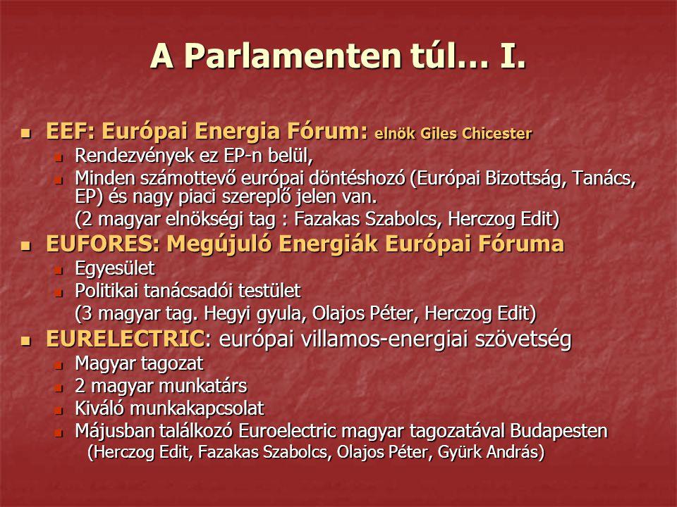 A Parlamenten túl… I. EEF: Európai Energia Fórum: elnök Giles Chicester. Rendezvények ez EP-n belül,