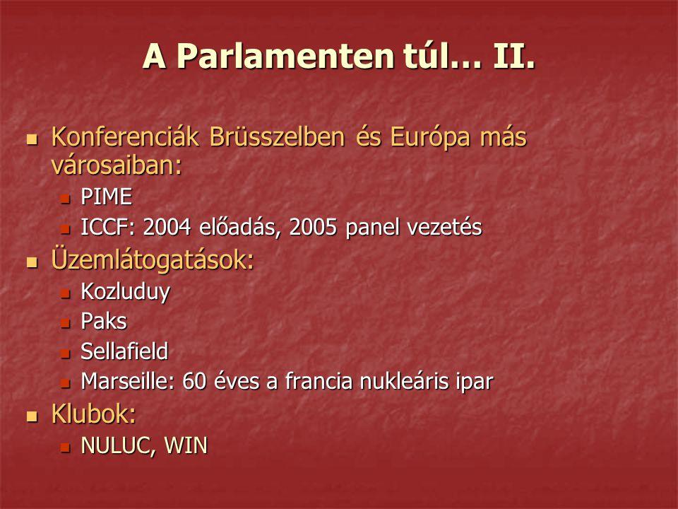 A Parlamenten túl… II. Konferenciák Brüsszelben és Európa más városaiban: PIME. ICCF: 2004 előadás, 2005 panel vezetés.