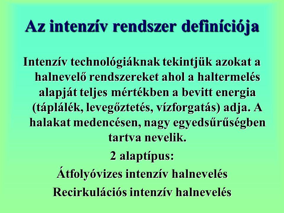 Az intenzív rendszer definíciója