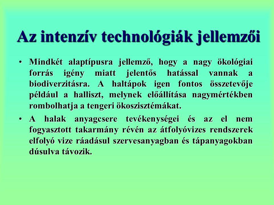 Az intenzív technológiák jellemzői
