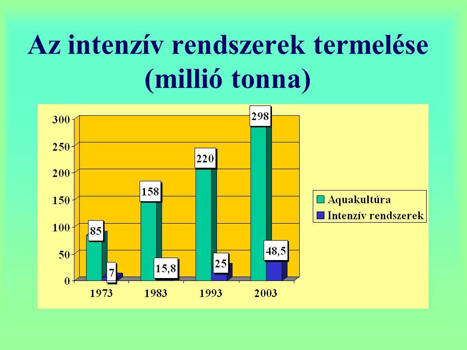Az intenzív rendszerek termelése (millió tonna)