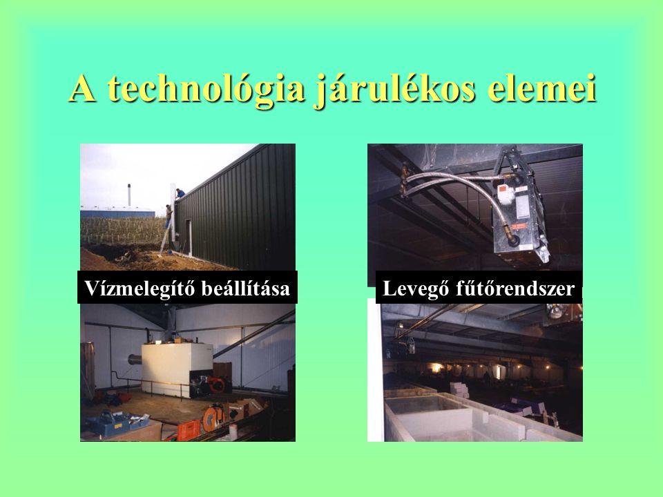 A technológia járulékos elemei