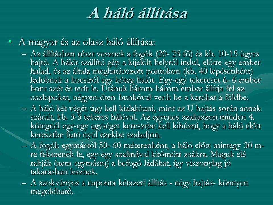 A háló állítása A magyar és az olasz háló állítása: