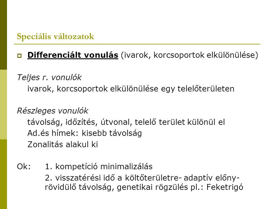 Speciális változatok Differenciált vonulás (ivarok, korcsoportok elkülönülése) Teljes r. vonulók.