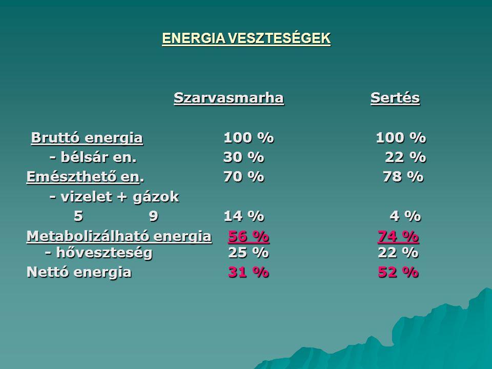 Szarvasmarha Sertés ENERGIA VESZTESÉGEK Bruttó energia 100 % 100 %