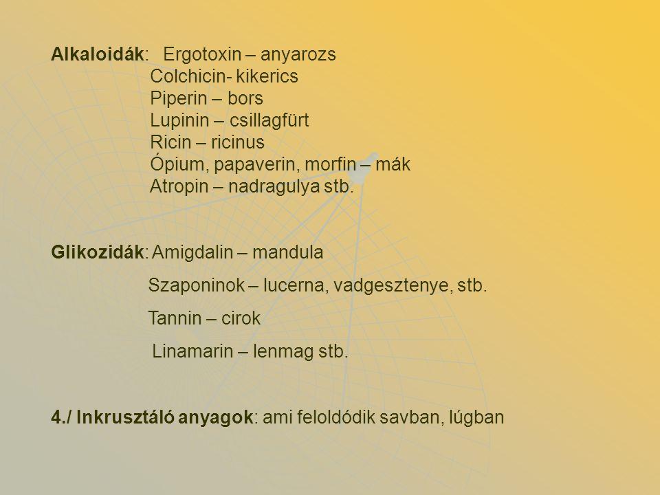 Alkaloidák: Ergotoxin – anyarozs