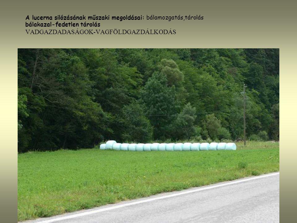 A lucerna silózásának műszaki megoldásai: bálamozgatás,tárolás bálakazal-fedetlen tárolás VADGAZDADASÁGOK-VAGFÖLDGAZDÁLKODÁS
