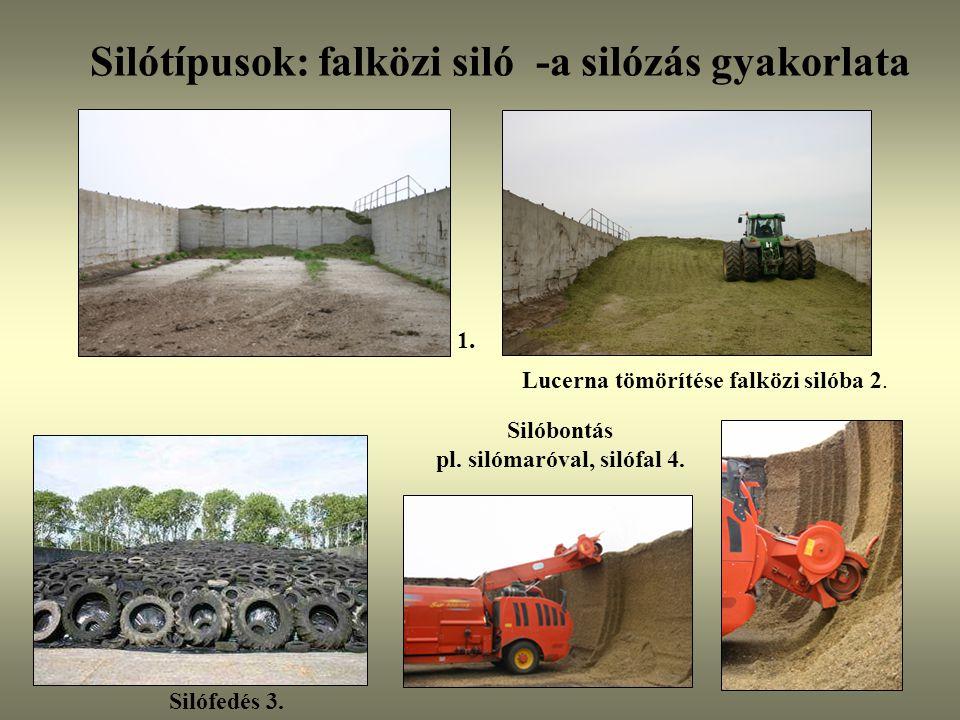Silótípusok: falközi siló -a silózás gyakorlata