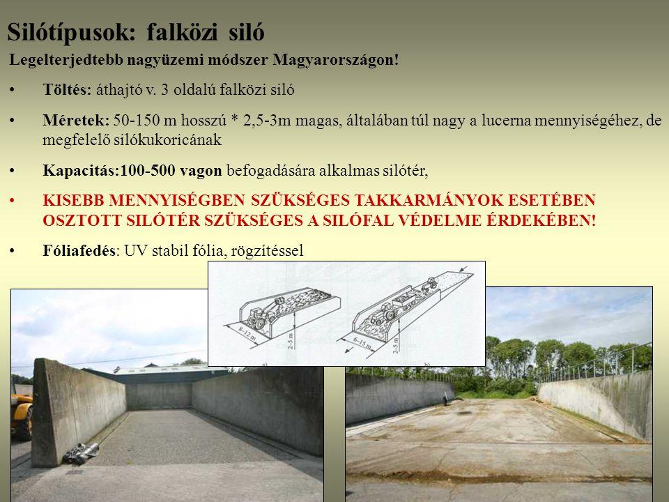 Silótípusok: falközi siló
