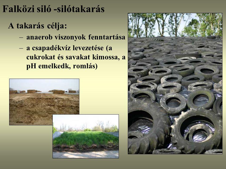 Falközi siló -silótakarás
