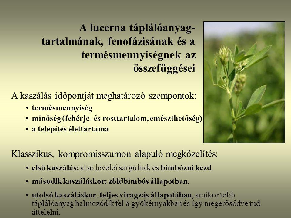 A lucerna táplálóanyag-tartalmának, fenofázisának és a termésmennyiségnek az összefüggései