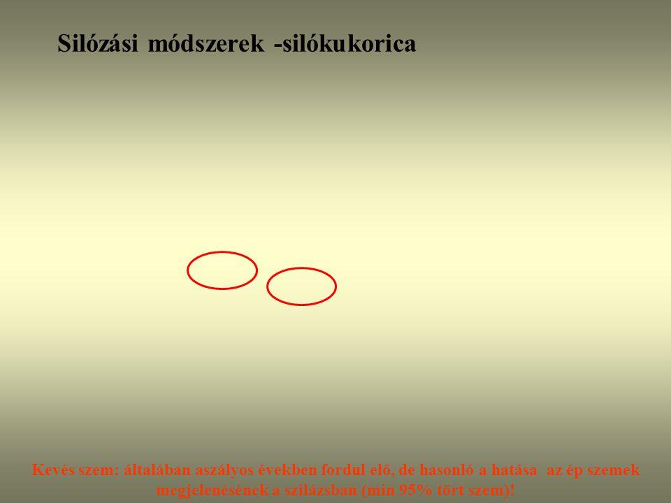Silózási módszerek -silókukorica