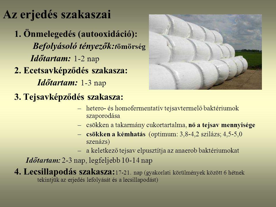 Az erjedés szakaszai 1. Önmelegedés (autooxidáció):