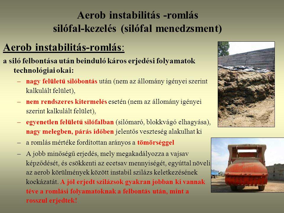 Aerob instabilitás -romlás silófal-kezelés (silófal menedzsment)