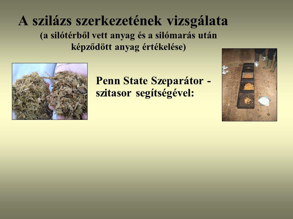 A szilázs szerkezetének vizsgálata (a silótérből vett anyag és a silómarás után képződött anyag értékelése)