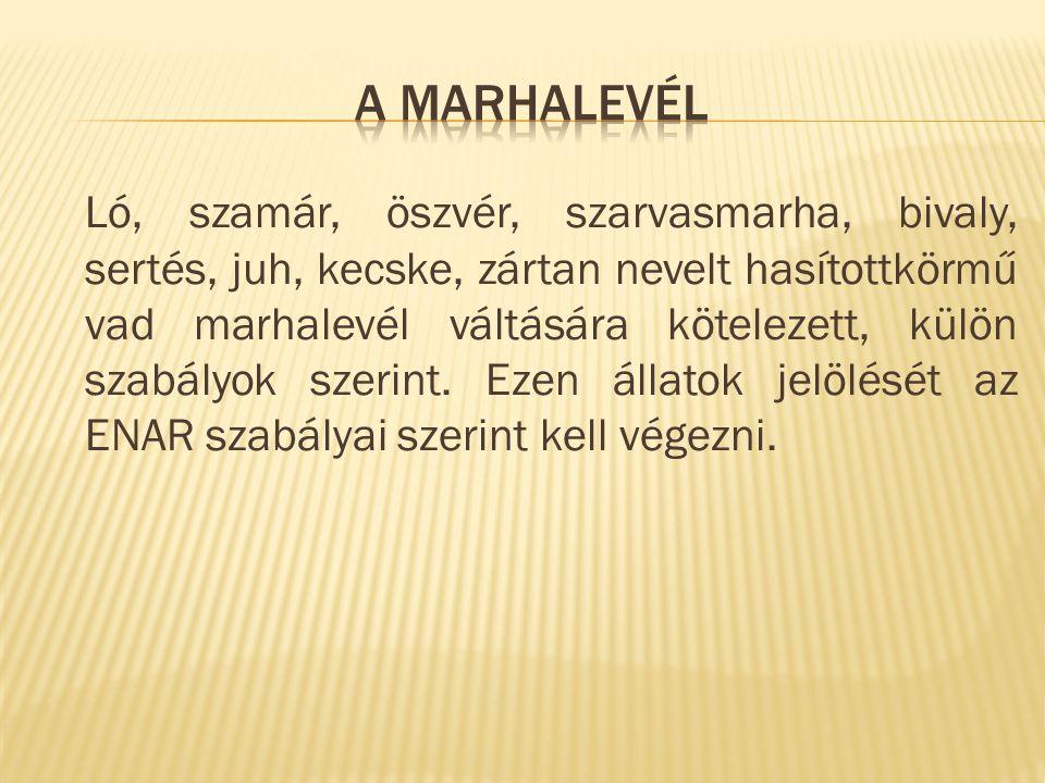 A marhalevél