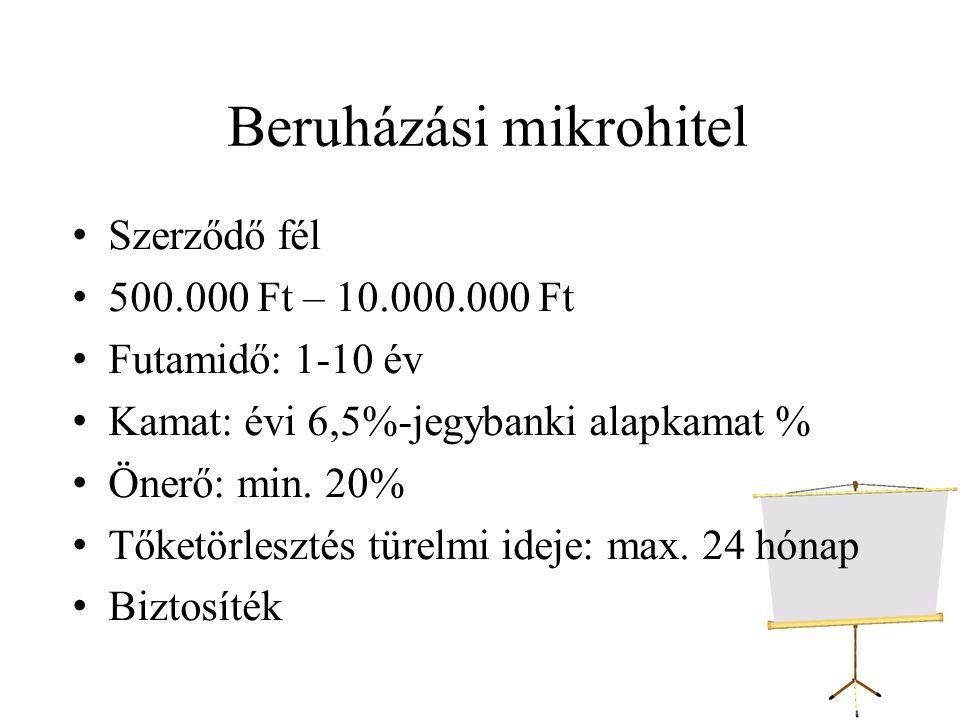 Beruházási mikrohitel