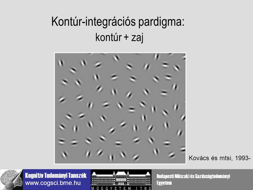 Kontúr-integrációs pardigma: kontúr + zaj