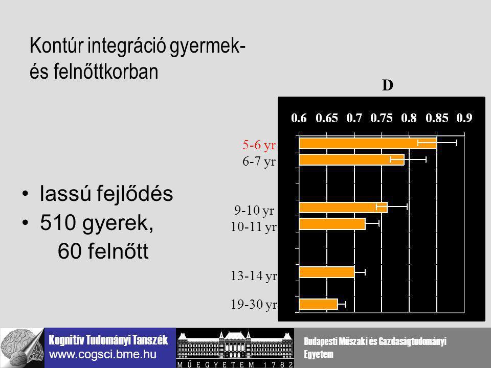 Kontúr integráció gyermek- és felnőttkorban