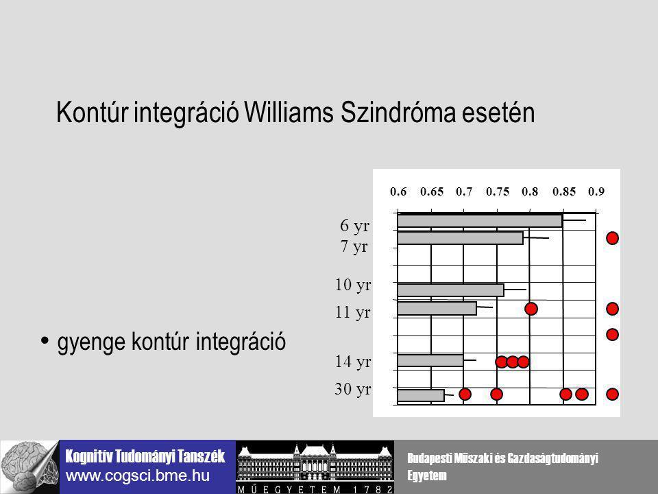 Kontúr integráció Williams Szindróma esetén