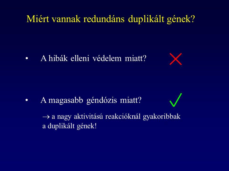 Miért vannak redundáns duplikált gének