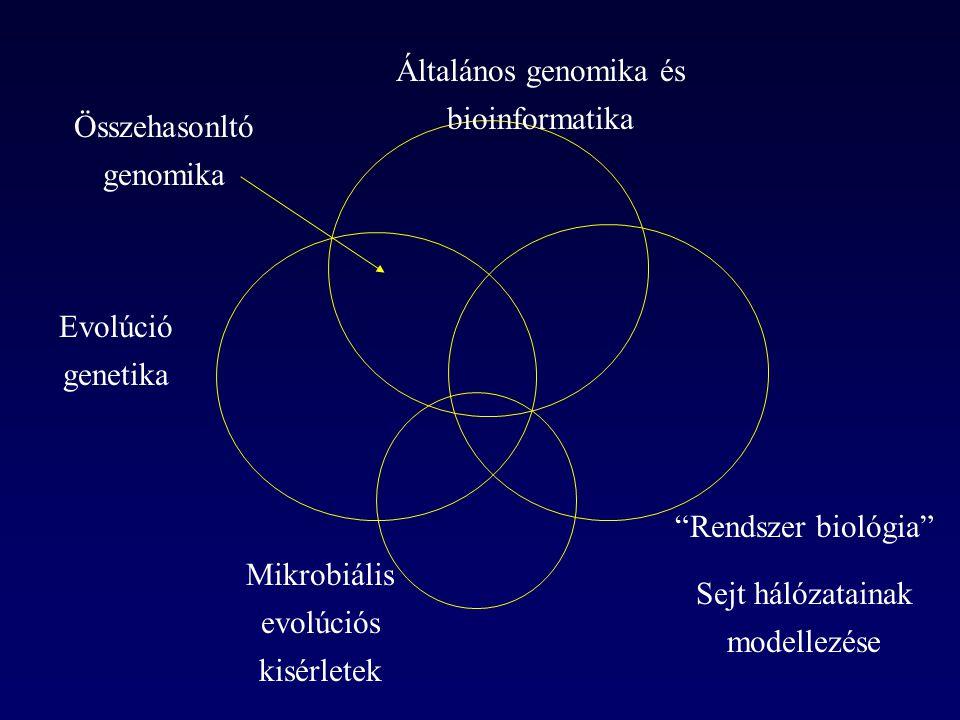 Általános genomika és bioinformatika
