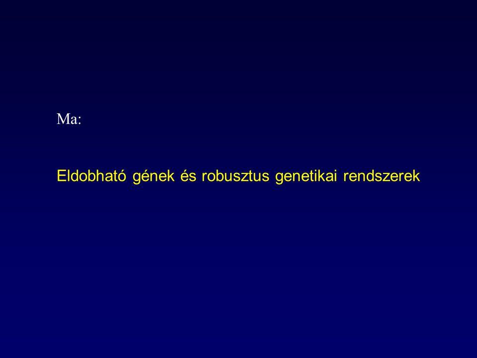 Ma: Eldobható gének és robusztus genetikai rendszerek