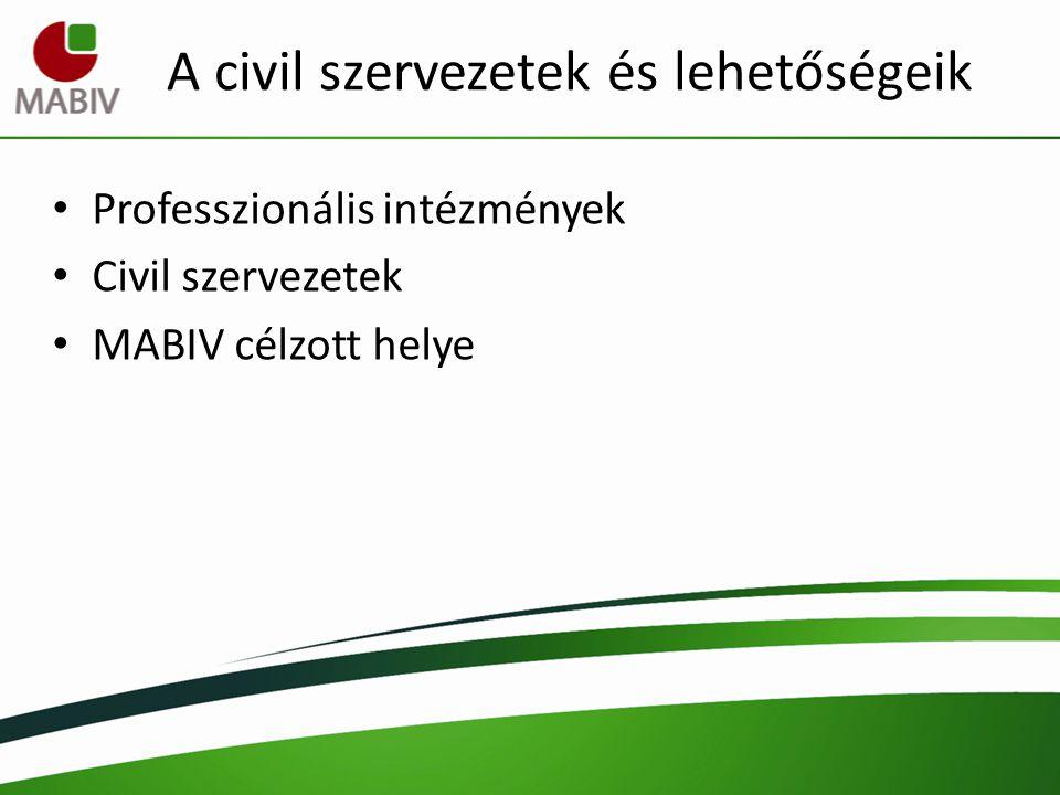 A civil szervezetek és lehetőségeik