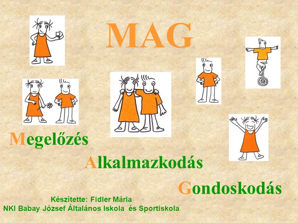 MAG Megelőzés Alkalmazkodás Gondoskodás Készítette: Fidler Mária