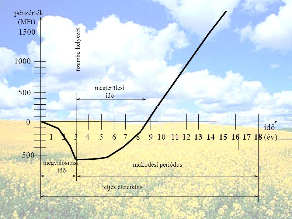 pénzérték (MFt) 1500. üzembe helyezés. 1000. megtérülési. idő. 500. idő. (év) 1. 2. 3. 4.