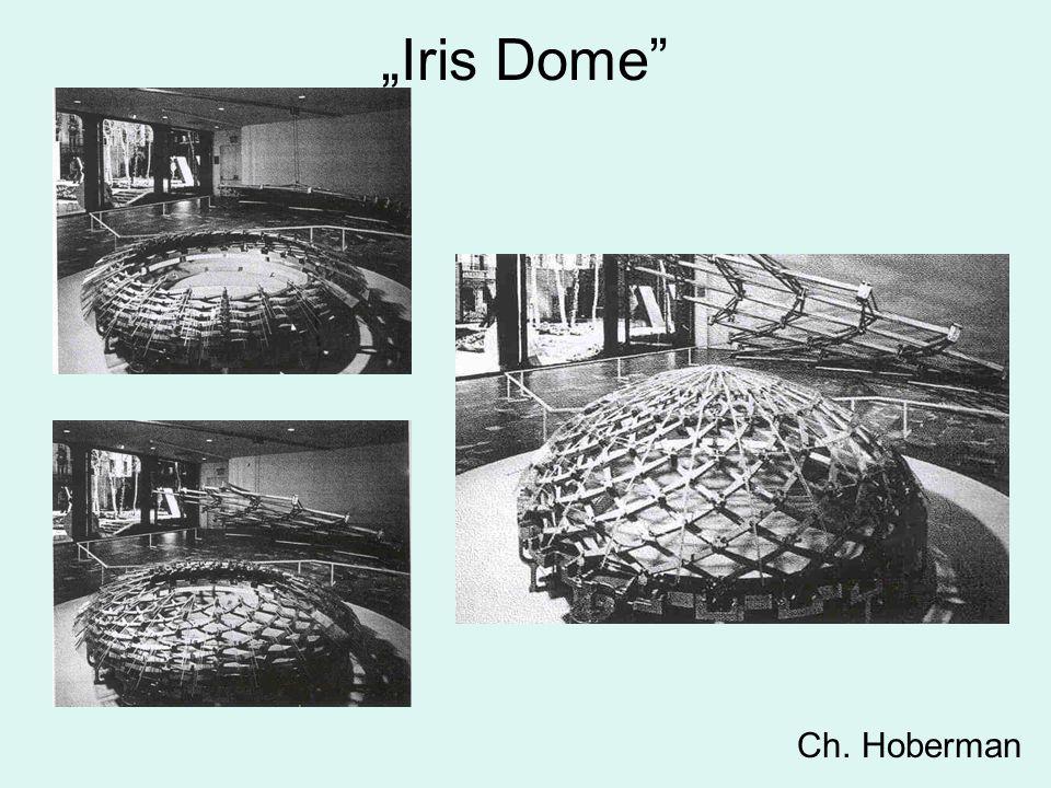 """""""Iris Dome Ch. Hoberman"""