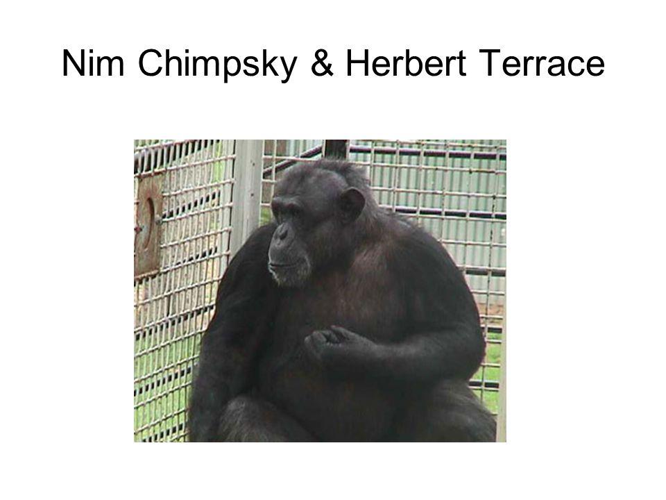 Nim Chimpsky & Herbert Terrace