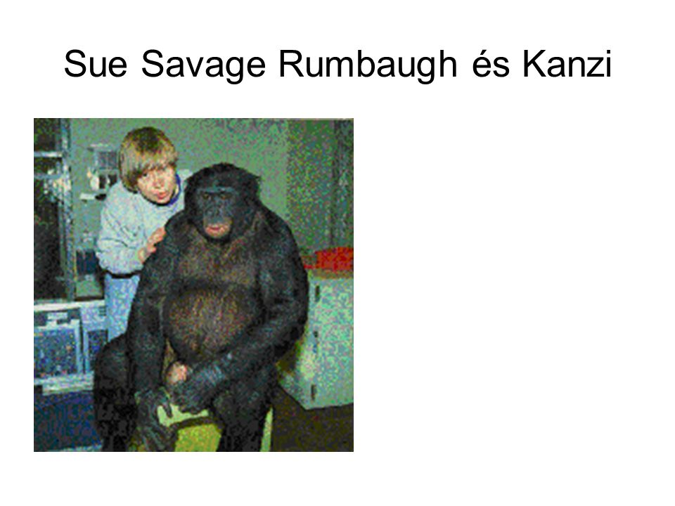 Sue Savage Rumbaugh és Kanzi